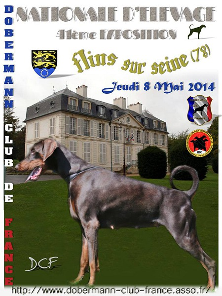 French national breeding show flins sur seine france for Comemploi flins sur seine